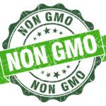 non gmo green vintage seal isolated on white